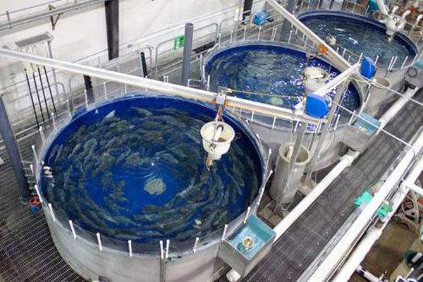 循环冷却水