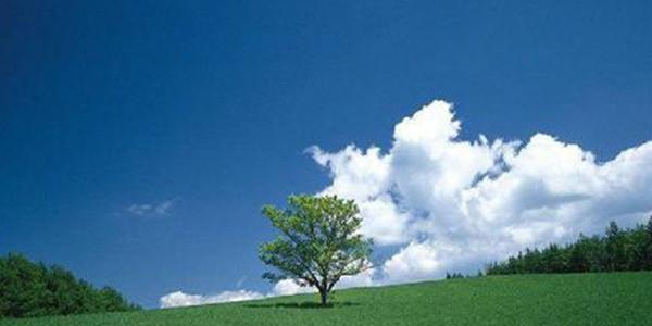 为了环保,节约能源,什么除垢剂比较好?