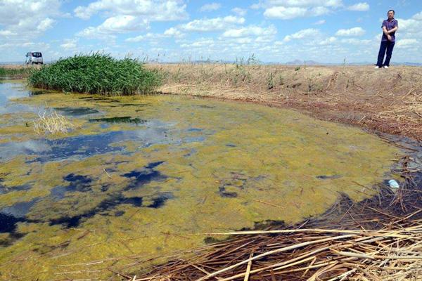 内蒙古水体水域