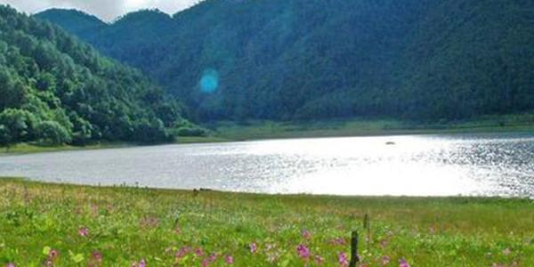 中国进出口银行向清新环境提供授信5亿元