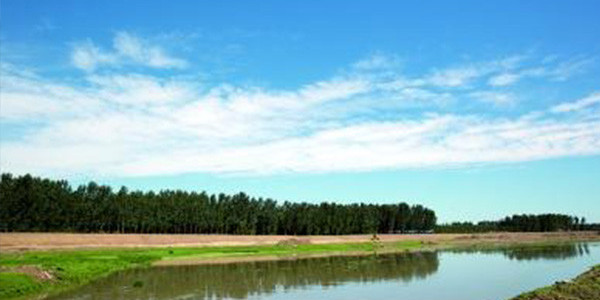强化水质环境监测监督工作如何进行?