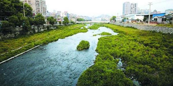 河道综合治理中都存在哪些问题?