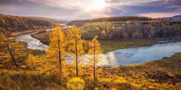 大兴安岭重点国有林区停伐政策全面落实
