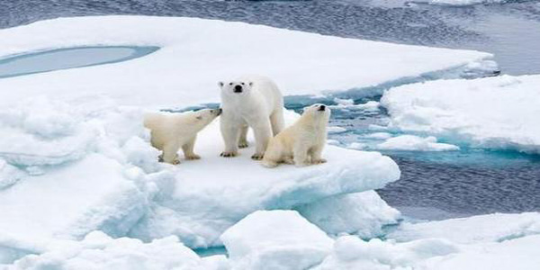 我们再起航考察北极气候