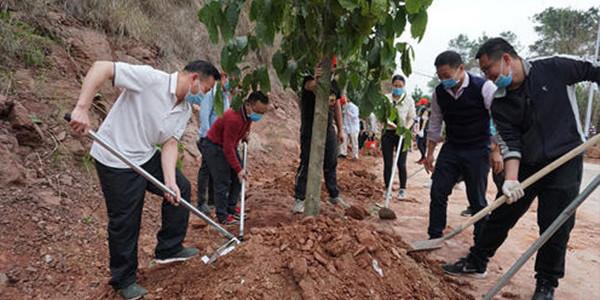 全国政协机关开展义务植树活动