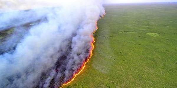 遏制重特大森林草原火灾发生
