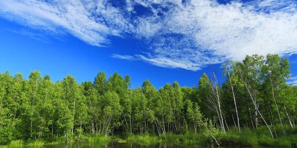 江苏将实施生态环境分区管控