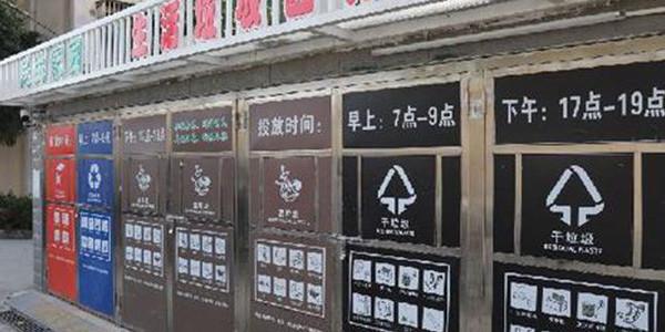 半年了,上海垃圾分类效果如何?