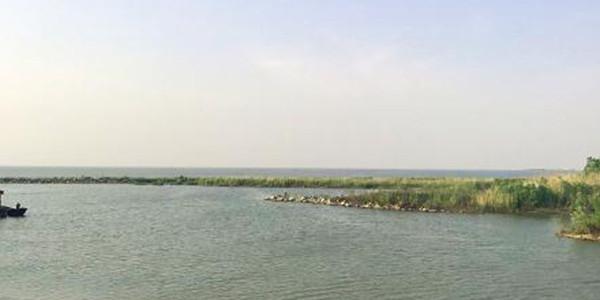 北京河长专项行动发现问题636个