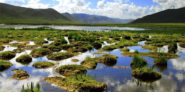 青海推进三江源国家公园建设