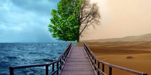 环境与健康研究新著出版