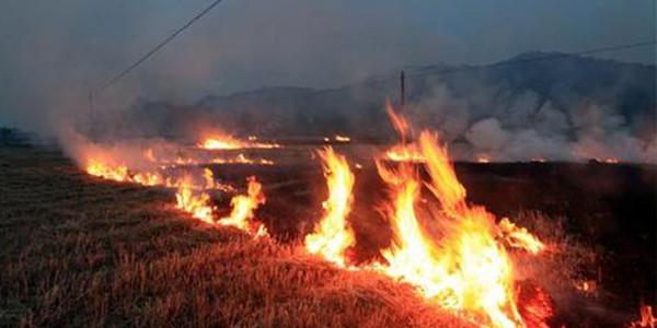 解决秸秆焚烧污染问题