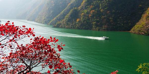 十年禁捕,每分每秒保护长江