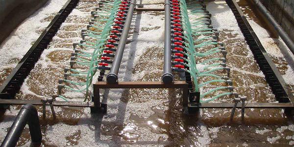 为何废水总氮降低效果差