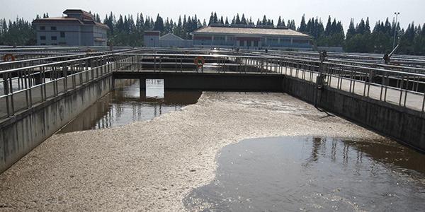 废水脱氮三大要素你知道吗