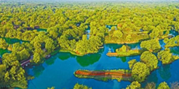 保护利用湿地 释放生态红利
