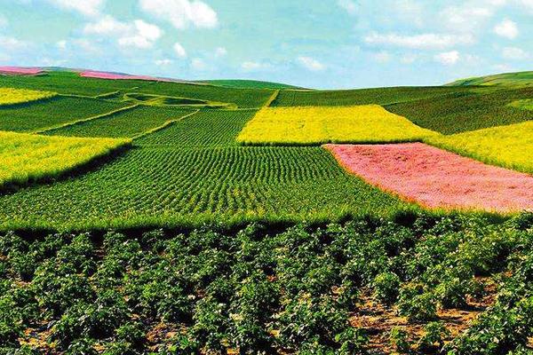 农业发展的图片