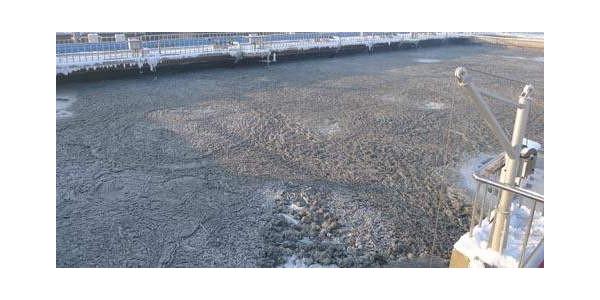 针对活性污泥驯化后续阶段