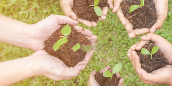 土壤生态环境保护规划是怎么样的?