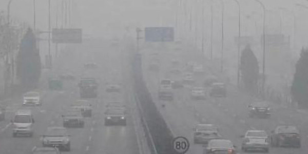 沧州等14个城市降尘量平均值同比不降反升