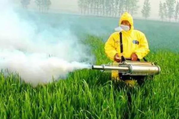 化学物质环境