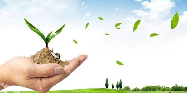 齐手共进,推进生态绿色发展
