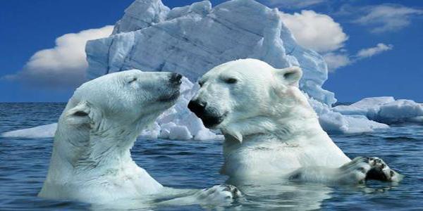 如何联合各国一起推进气候行动