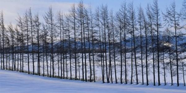 强寒潮来袭,我国即将进入冬季?