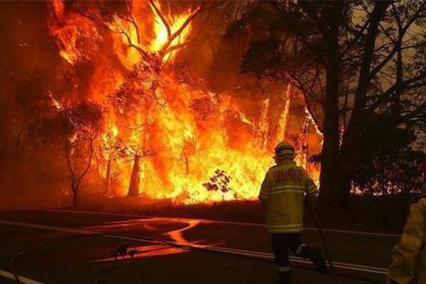 澳大利亚大火