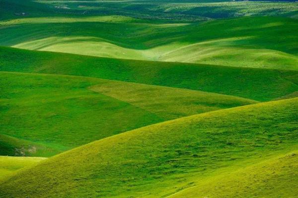 草原生态修复