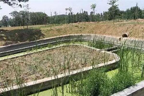 农村生活污水
