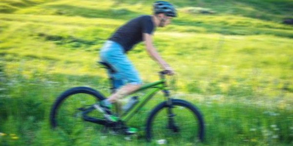 携手行动,践行绿色生活方式