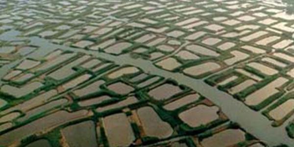 今年水旱灾害防御形势严峻