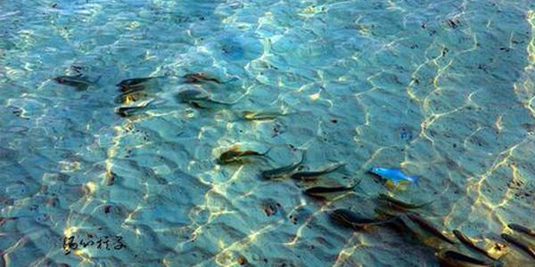 海洋经济发展战略要地如何进行呢?