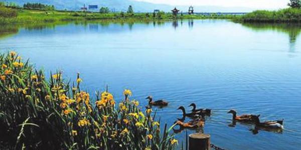 湖北通报疫情防控期间生态环保工作情况